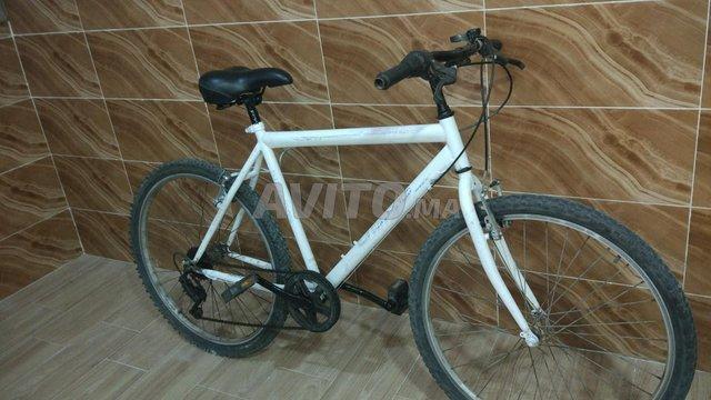 دراجة بيضاء - 3