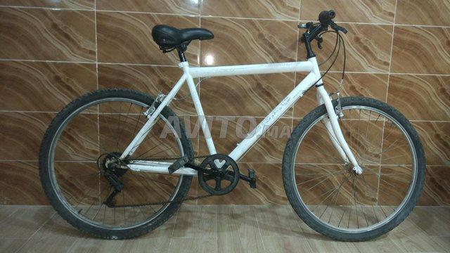 دراجة بيضاء - 1