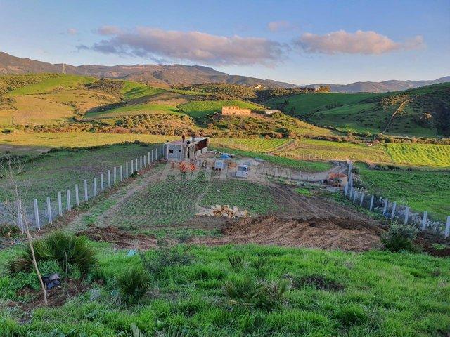 Terrain et ferme en Vente à Tanger - 4
