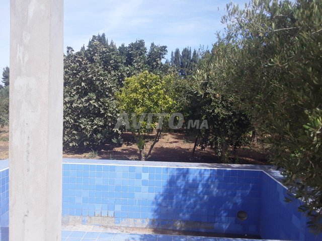 Maison et villa en Vente à Berrechid - 4