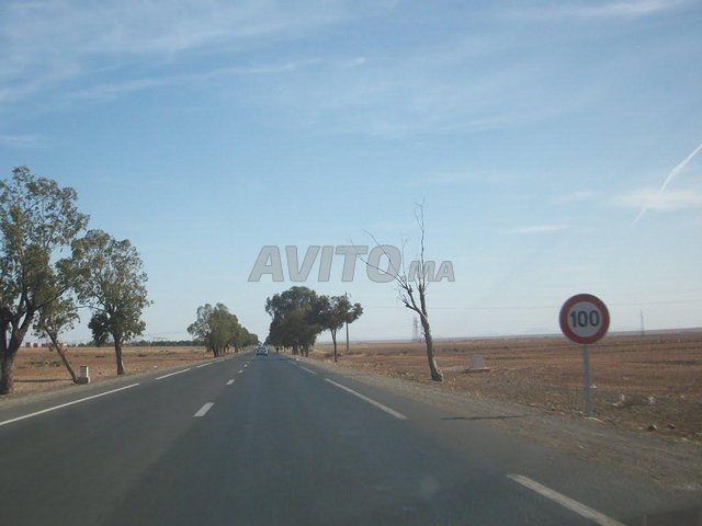 Terrain et ferme en Vente à Sidi Bou Othmane - 2