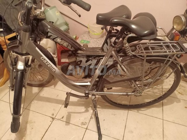vélo gazelle - 4