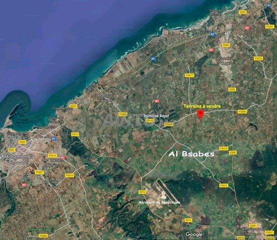 1 ha avec Plan Autorisé à Al-Bsabes de Benslimane - 2
