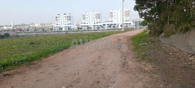 Terrain à vendre 48000m2 Haouzia-El jadida - 3