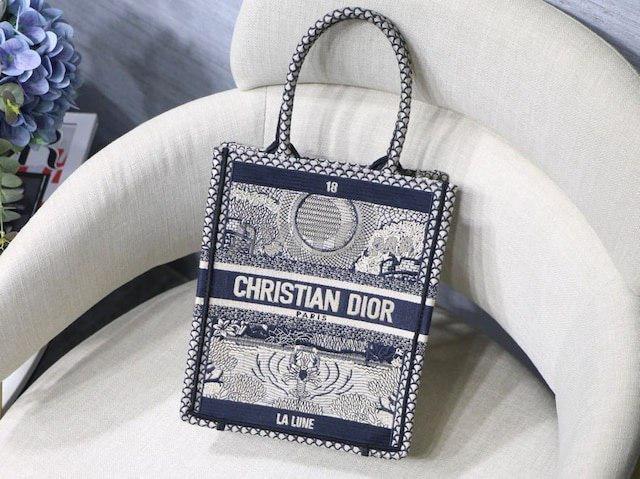 Dior Vertical book tote Bag  - 1