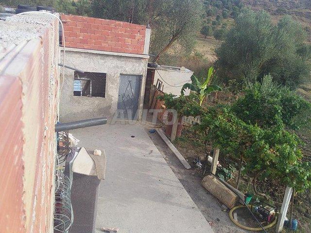 maison à vendre taounate  - 1
