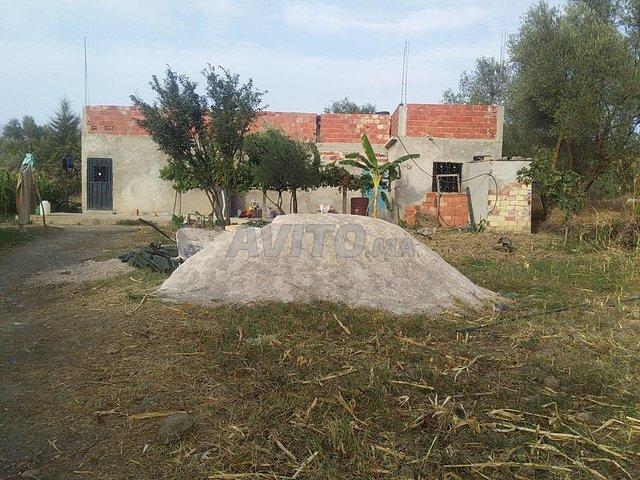 maison à vendre taounate  - 4