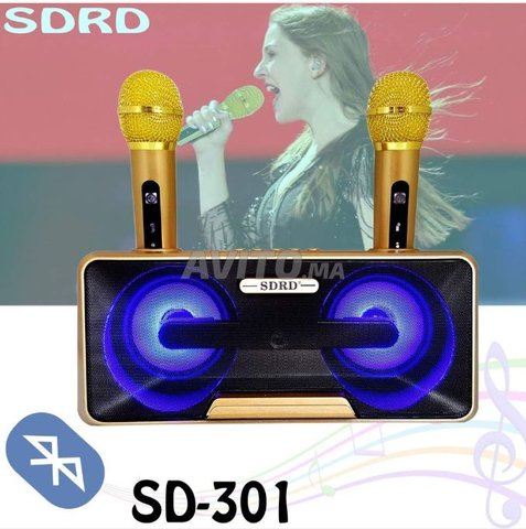 Microphone Speaker SD-301 Sans Fil Bluetooth - 3